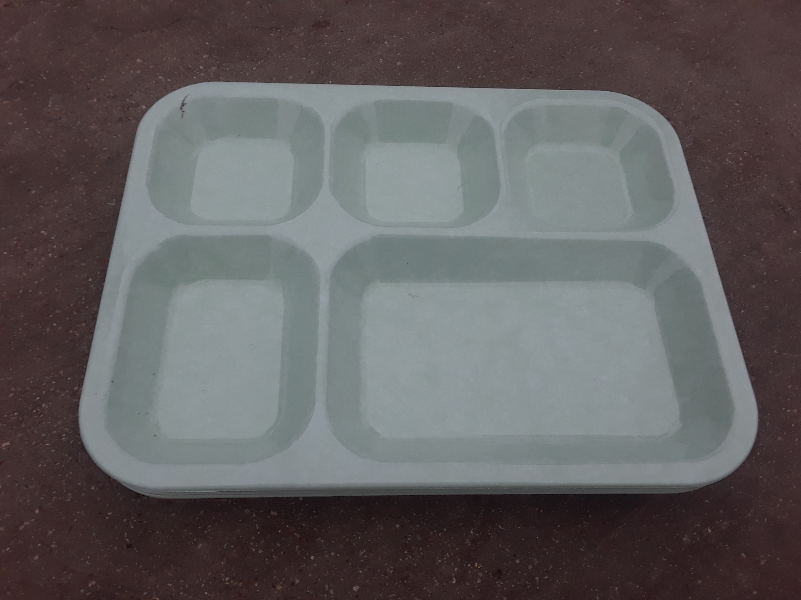 Plastic Serving Tray with Portions Set of 4 trays