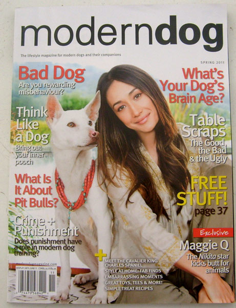 Modern Dog Magazine Spring 2011 Bad dogs behavior, think like a dog, free stuff, crime plus punishment