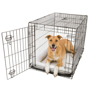 Fold and Carry Dog Crate with Tray for Medium Dogs 30 x 19 x 21 up to 40 lbs