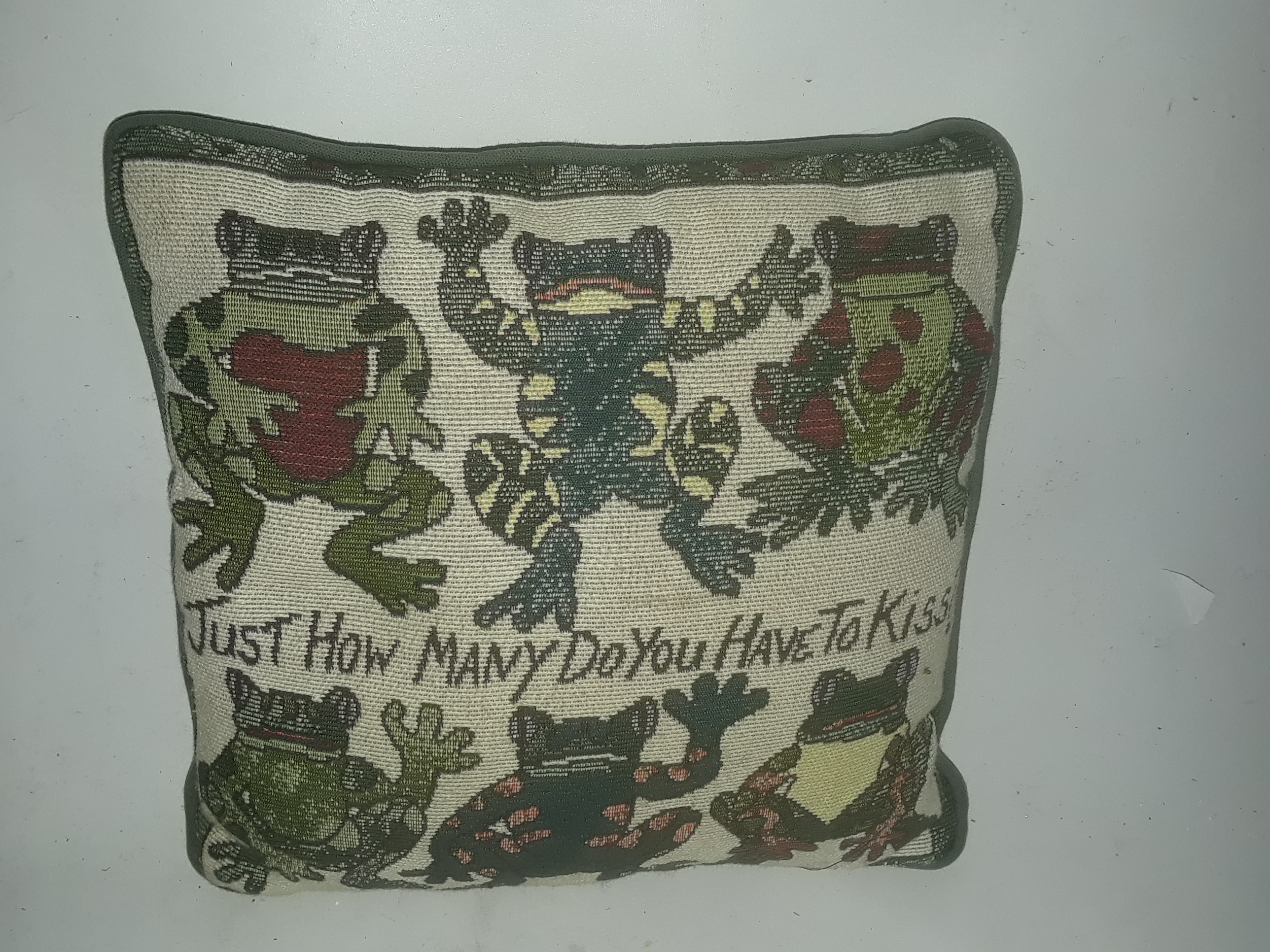 Green Decorative Pillow Frog Theme